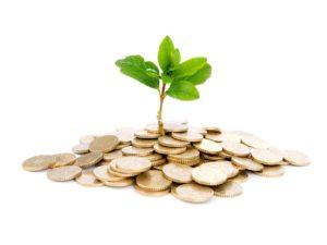 Начался конкурс грантов для сельхозпотребкооперативов