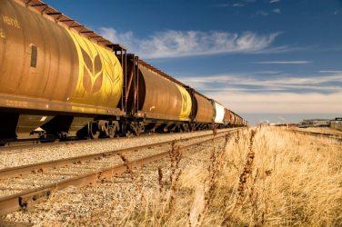 Экспортерам сельхозпродукции Иркутской области в 2019 г. будут компенсировать транспортировку