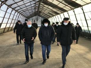Первый лесосеменной центр планируют создать в Иркутской области